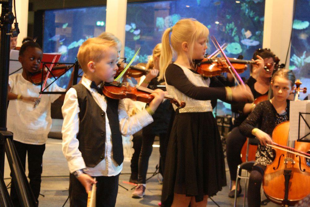 Orkesterlinje