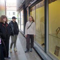BGK inline udstilling Roskilde