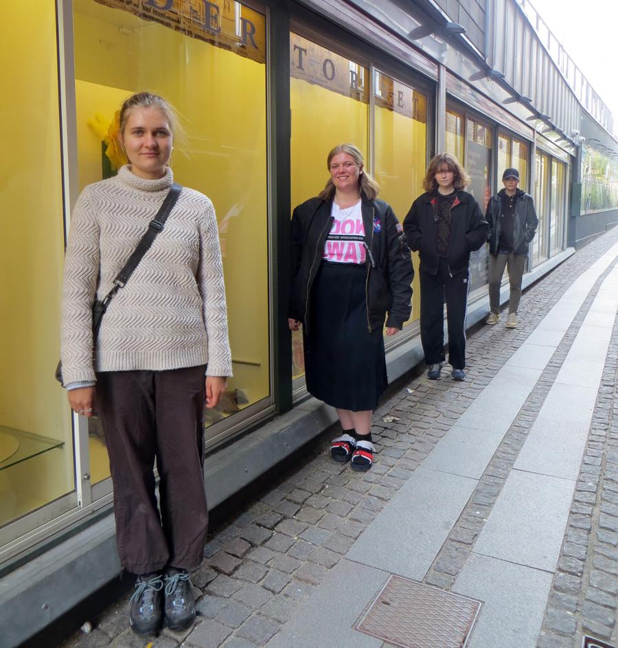 BGK inline udstilling Snæversti